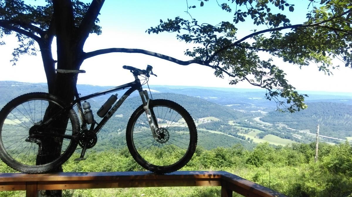 Green Ridge State Forest Mtn Bike Trail Mountain Bike Trail In
